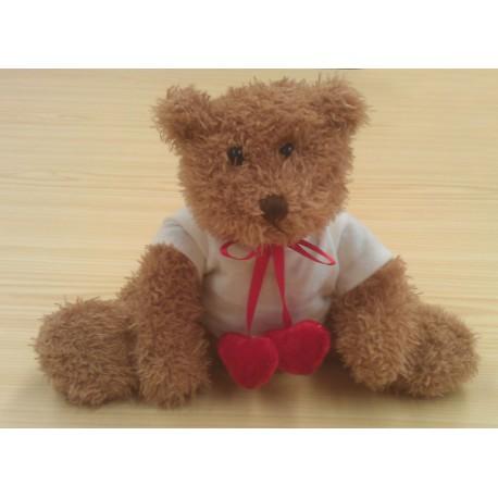Osito de peluche Teddy